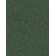 ECO 700